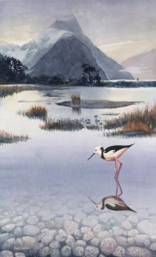 Milford Sound & Silence